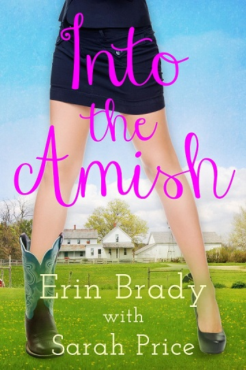 Into The Amish Cover